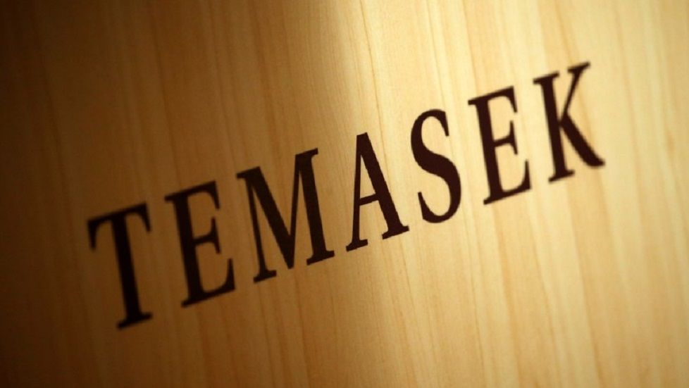 indonesia in temasek investment